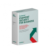 Kaspersky Endpoint Security for Business-SELECT 2-Year Lic. 10-24 User SOFKESBS10U24U2Y